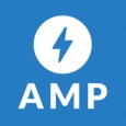 AMP project one year on